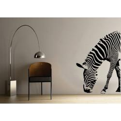 ST018 Zebra